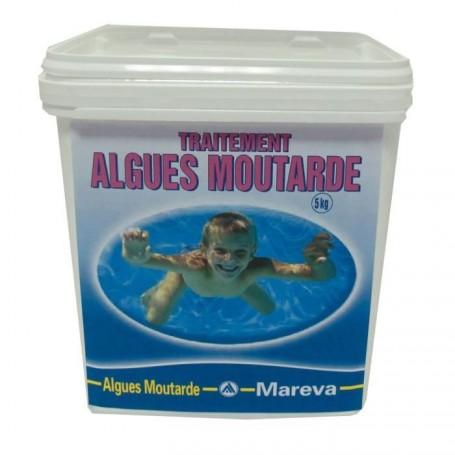 Comment se d barrasser de l 39 algue moutarde pisciniste brignoles piscines plus - Comment se debarrasser des araignees a l exterieur ...